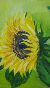 Sunflower in the wind
